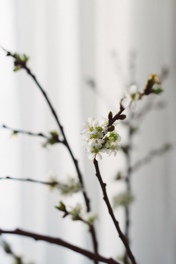 Babes_in_Boyland_Easter-Photo_Matilda-Hildingsson-Stylist_Nathalie-Myrberg-2