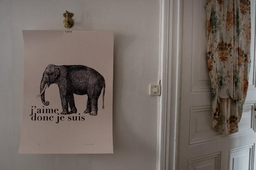 elefanten 1200x797