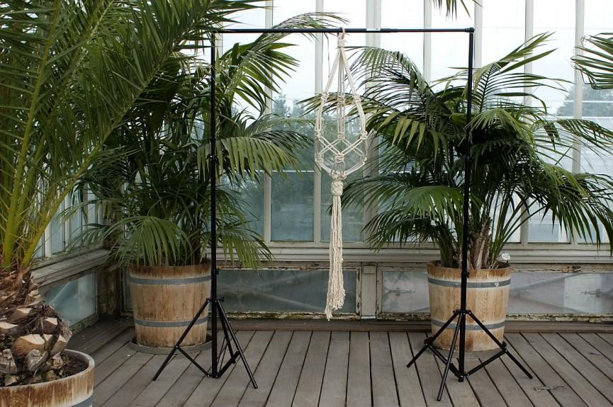 Frosta i Palmhuset Ampel stor pa stallning 1200x797