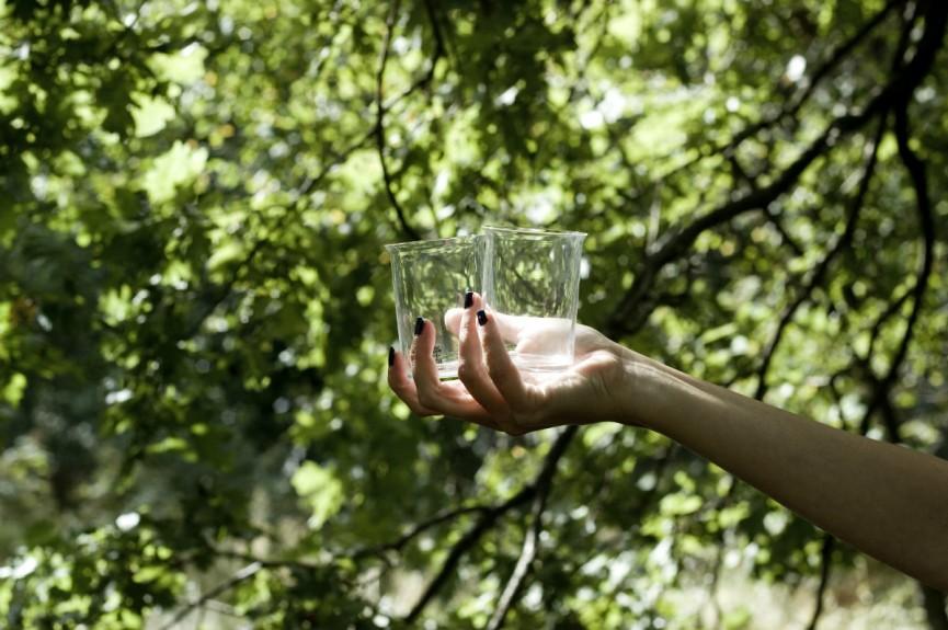 Skrufs i ekskogenPony glas + ninas hand 1200x797
