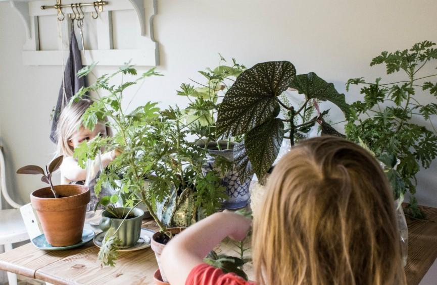 Nanna van Berlekom-talk to the greens4