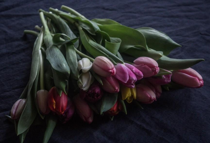 Nanna van berlekom- valentines2