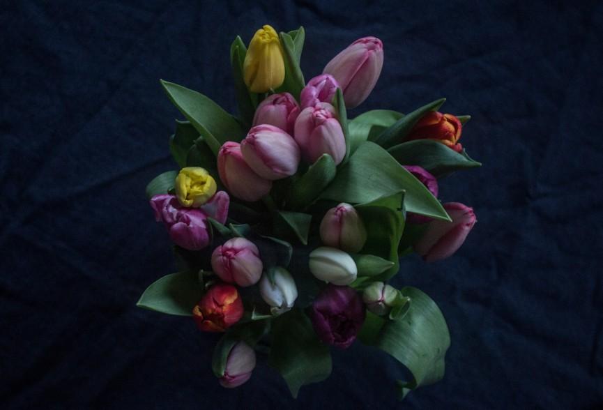 Nanna van berlekom- valentines3