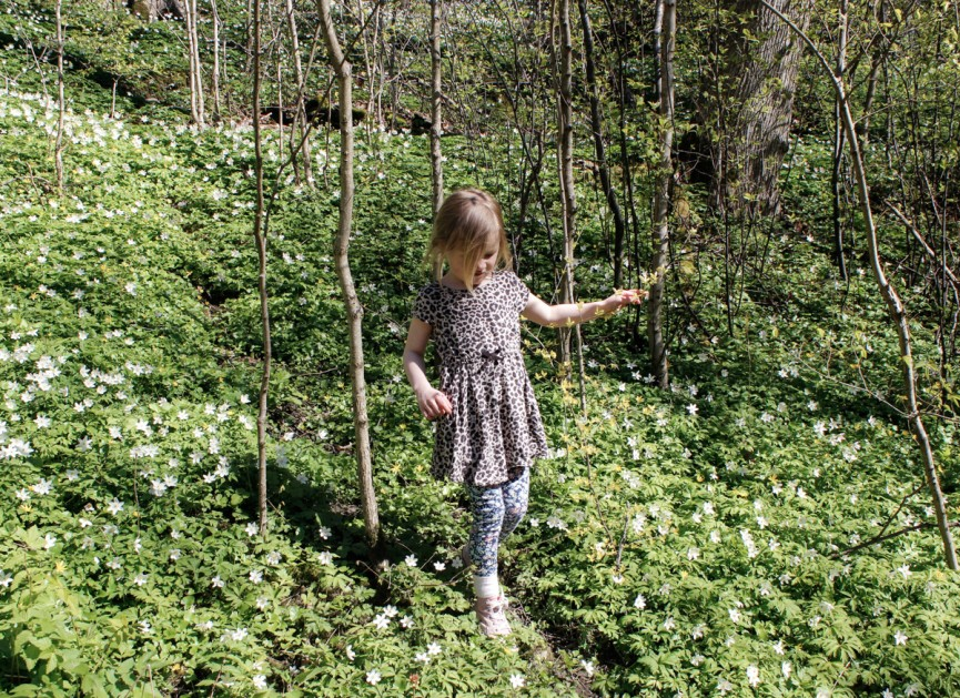 Nanna van Berlekom-botaniska