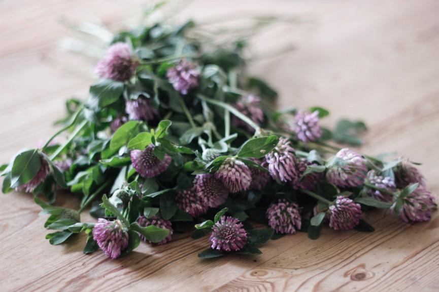 Nanna van Berlekom-flowers