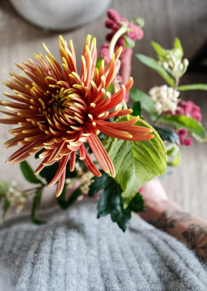 Nanna van Berlekom-autumnafriday