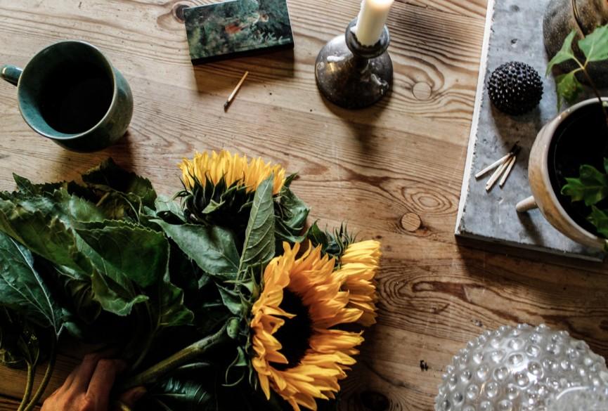 Nanna van Berlekom-sunflower-6