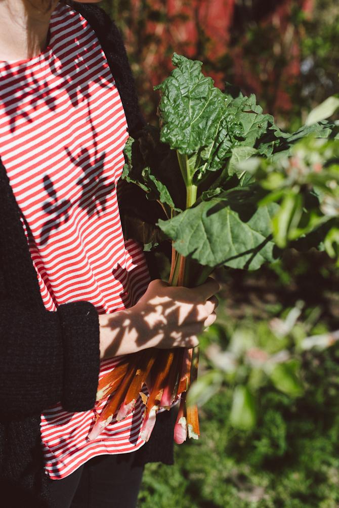 Rhubarb by Babes in Boyland