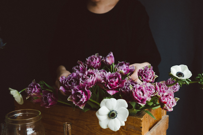 Tulips by Babes in Boyland