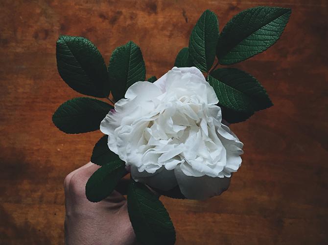 Flower wreath by Babes in Boyland