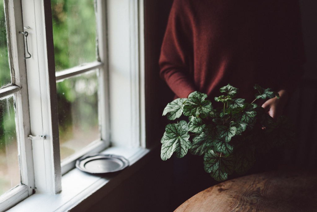 Slow living by Babes in Boyland