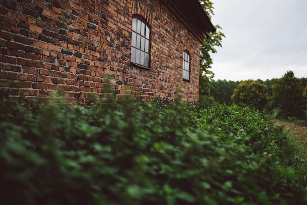 Babes_in_Boyland-Gaddeholm-19