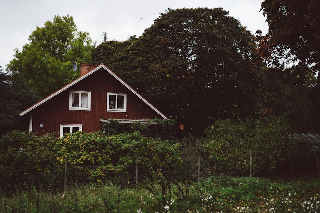 Babes_in_Boyland-Gaddeholm-23
