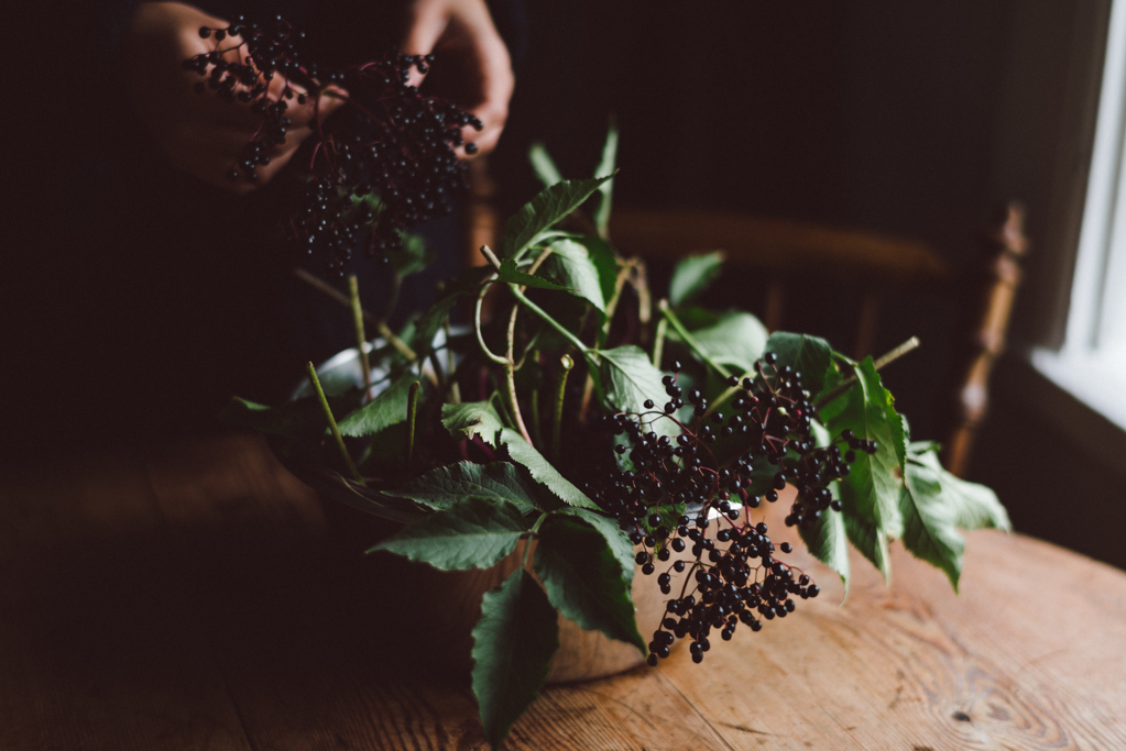 Elderberry juice by Babes in Boyland