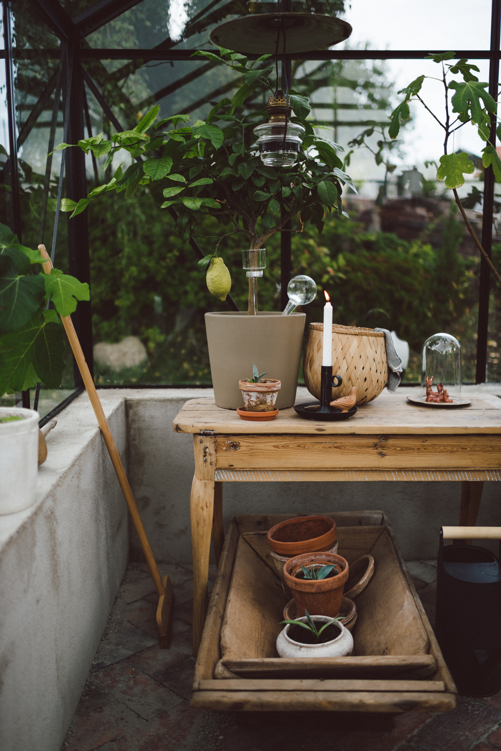 Greenery by Babes in Boyland