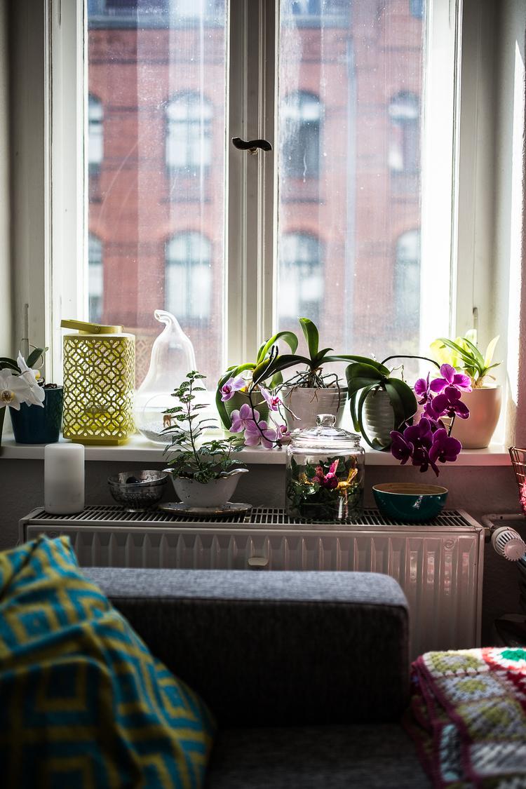 Homestory+Anna+Sterntaler+(85+von+94)