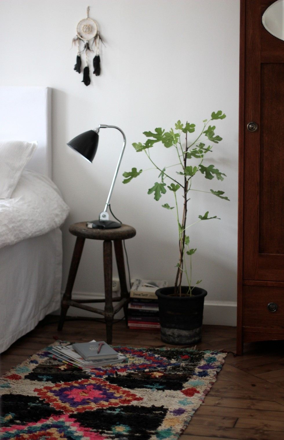 17doorsfigtree