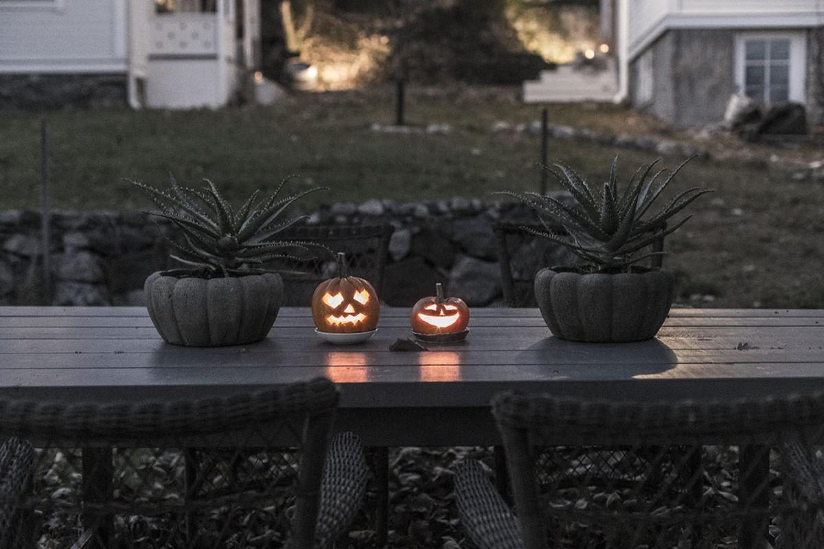 strenghielm_pumpkins