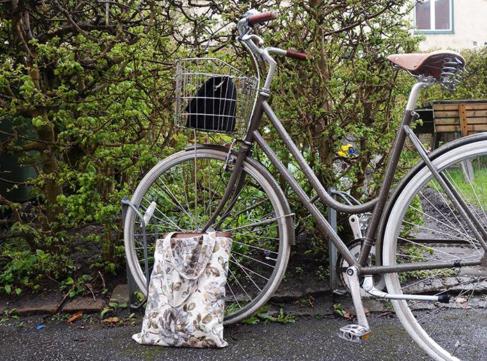 bikeid_langblondin_0428