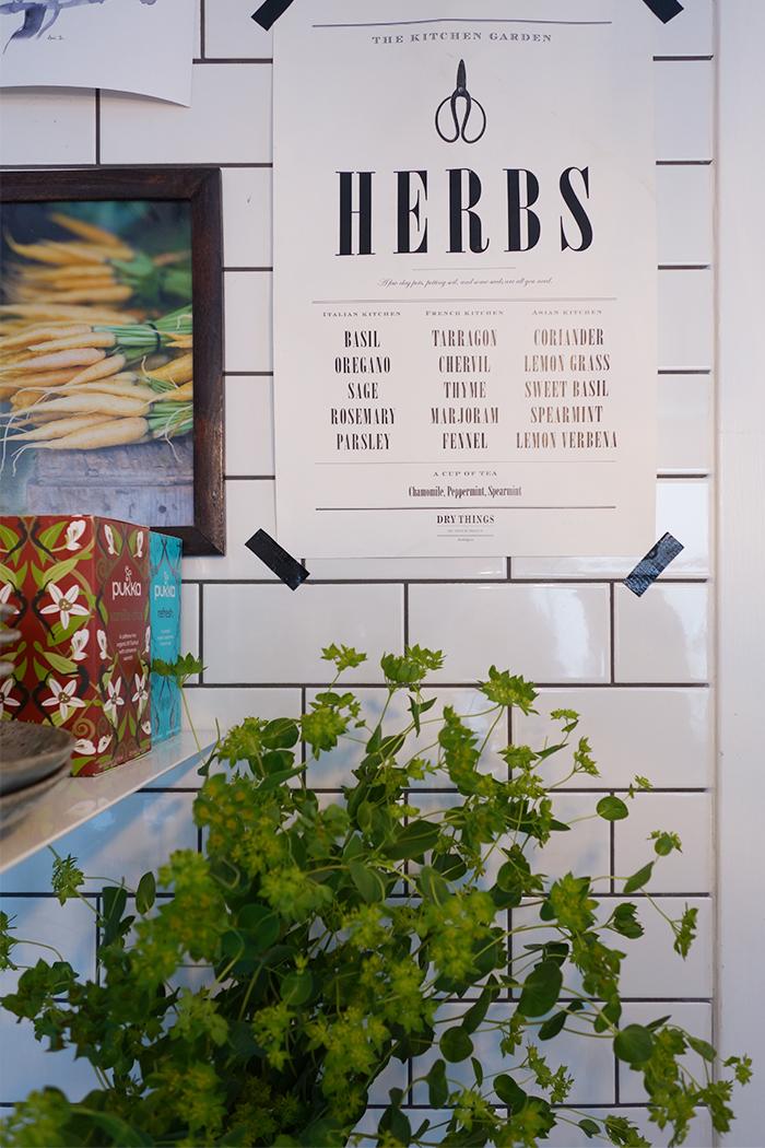 herbs_langblondin_0625
