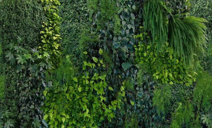Green Wall Mr Perswall