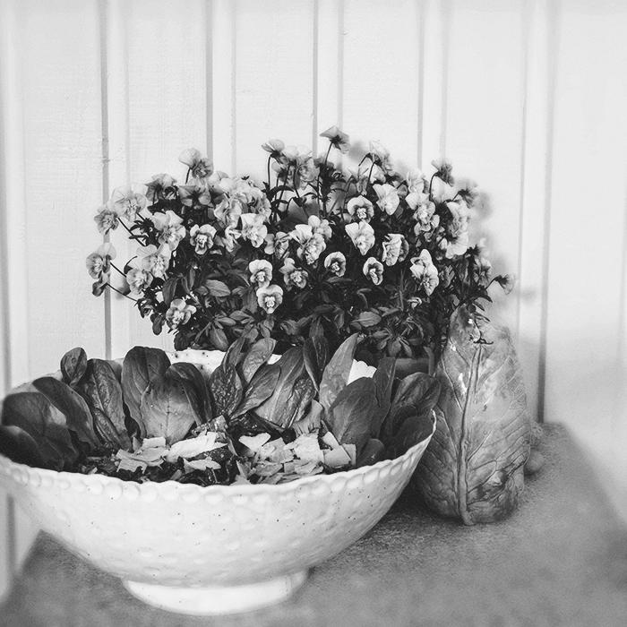 Midsummer © Anna  Malmberg