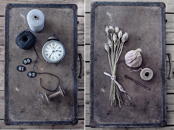 Still life © Anna  Malmberg (11)