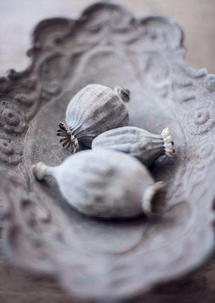 Still life © Anna  Malmberg (6)