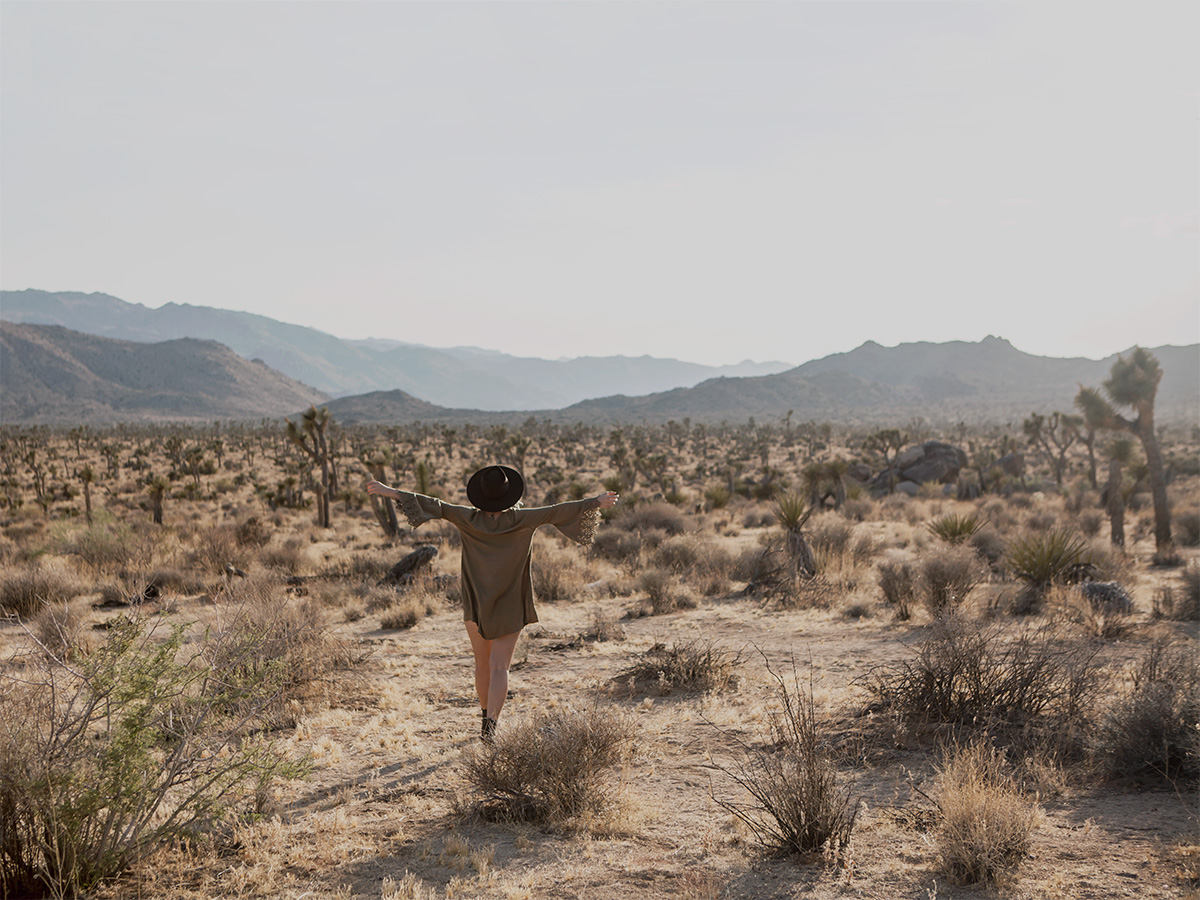 Desert freedom copyright 2016 Anna Malmberg