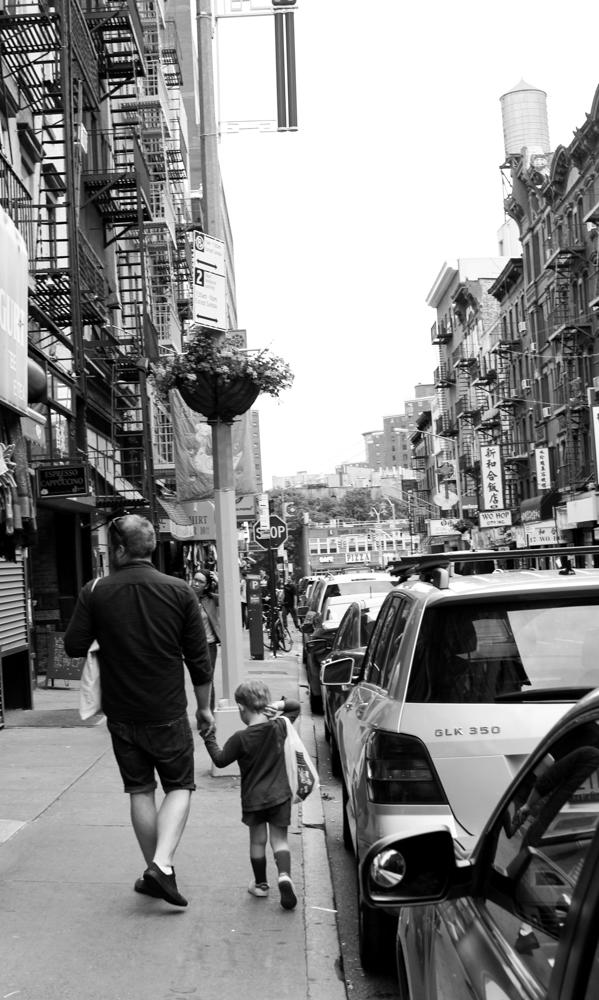 new york volang del 1-13