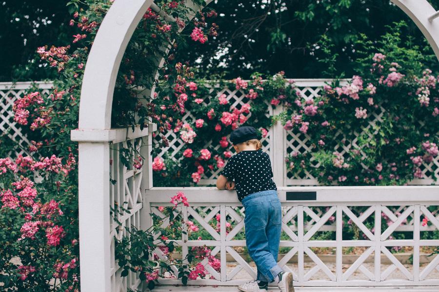 rose garden snug harbour-17