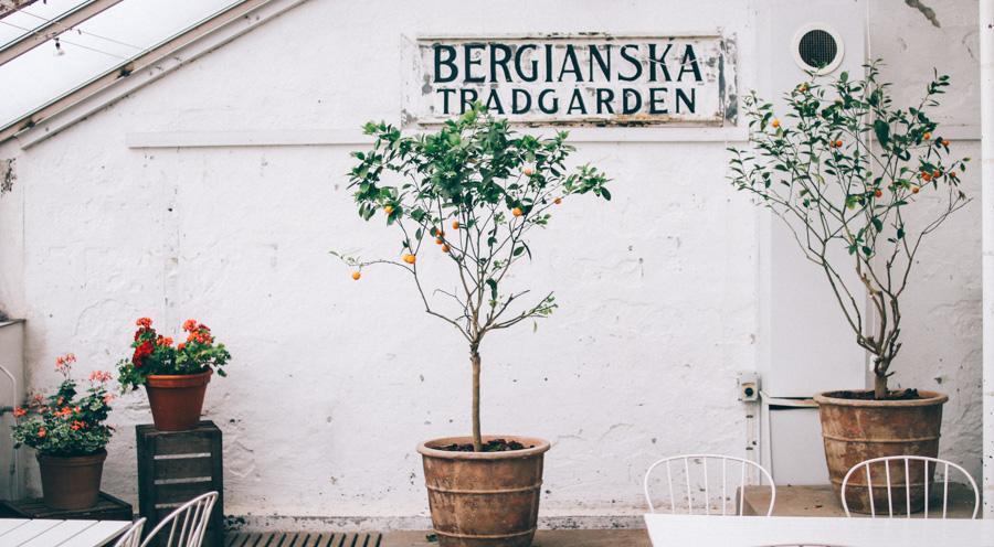bergianska tradgarden-24