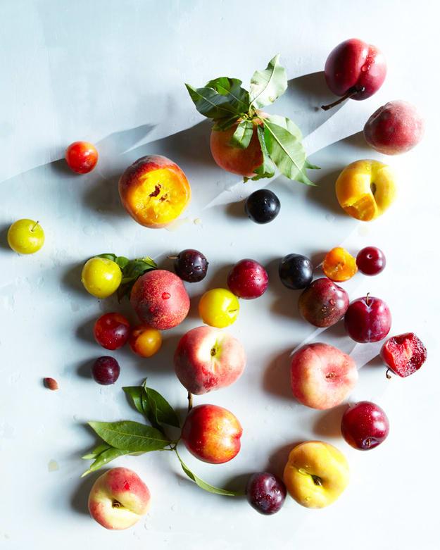 stenfrukt